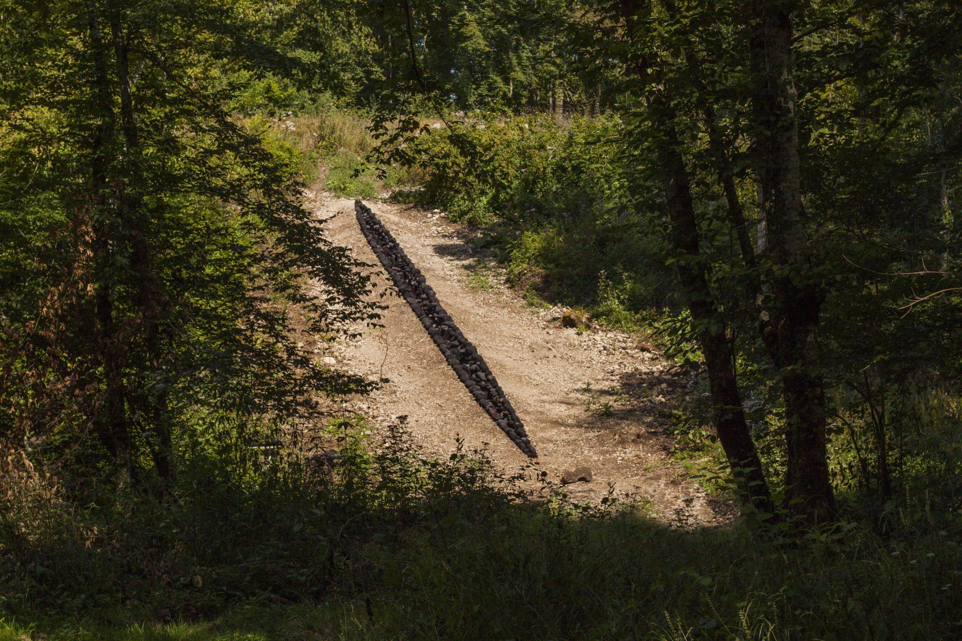 """Charlotte Pringuey-Cessac, """"Speranza""""; 2016, Vent des Forêts, Marcaulieu, Meuse"""