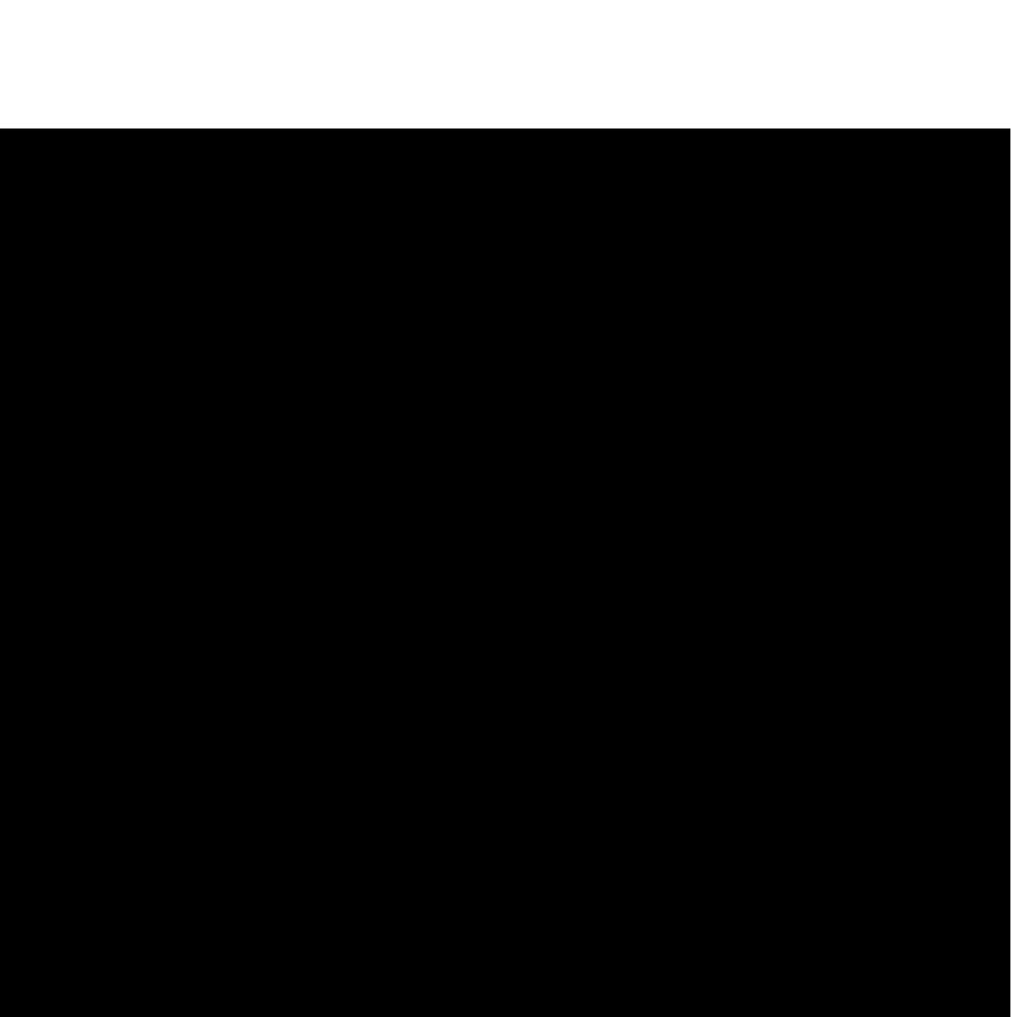 CACC FLAT noir