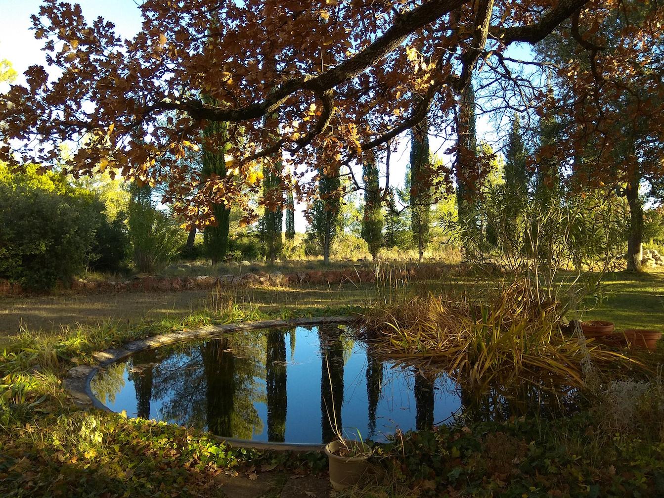 Bastide de Richeaume_Visuel jardin_Puyloubier