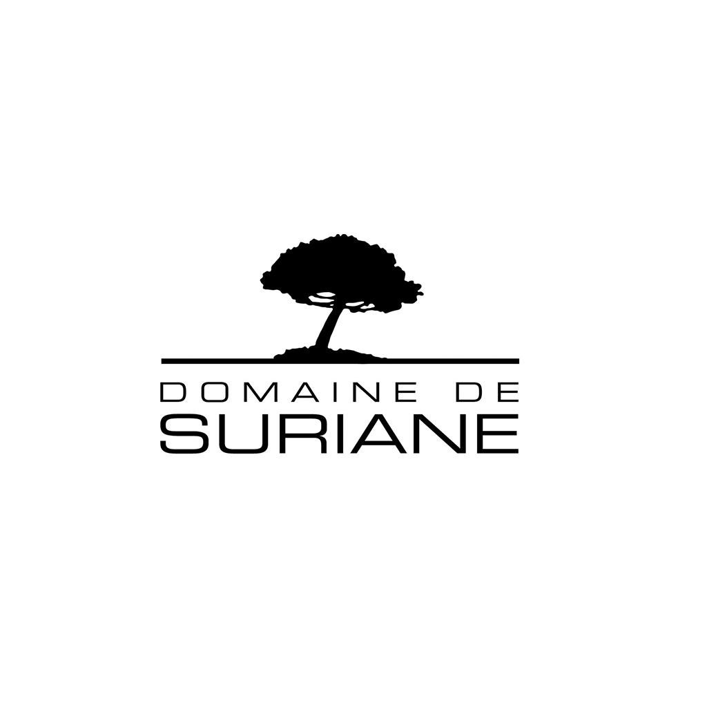logo n&B Suriane