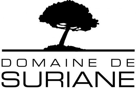 logo-voyonsvoir-Logo-Suriane