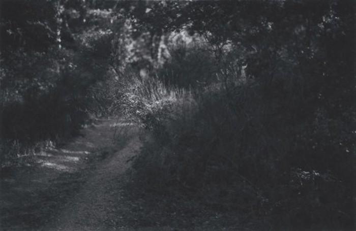 monts aureliens, 2010