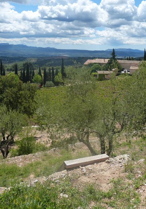 Domaine de Saint Ser : vue d'ensemble