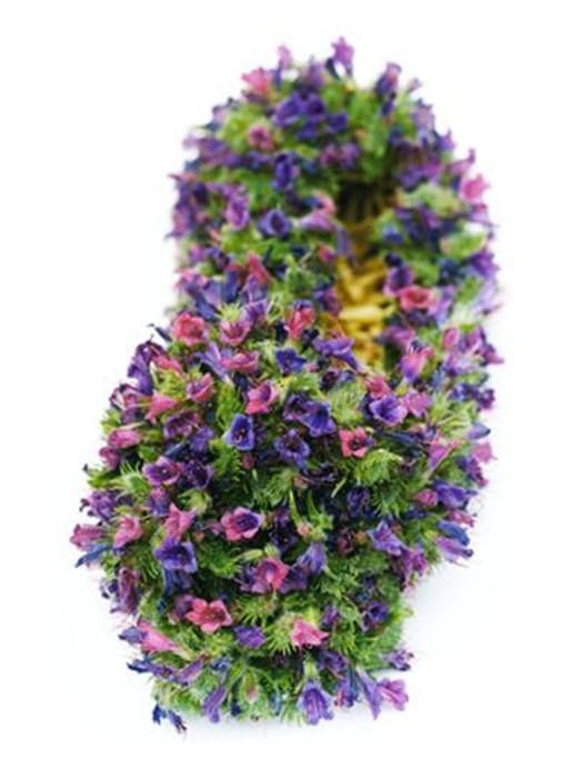 Sumiko Kai, fleurs