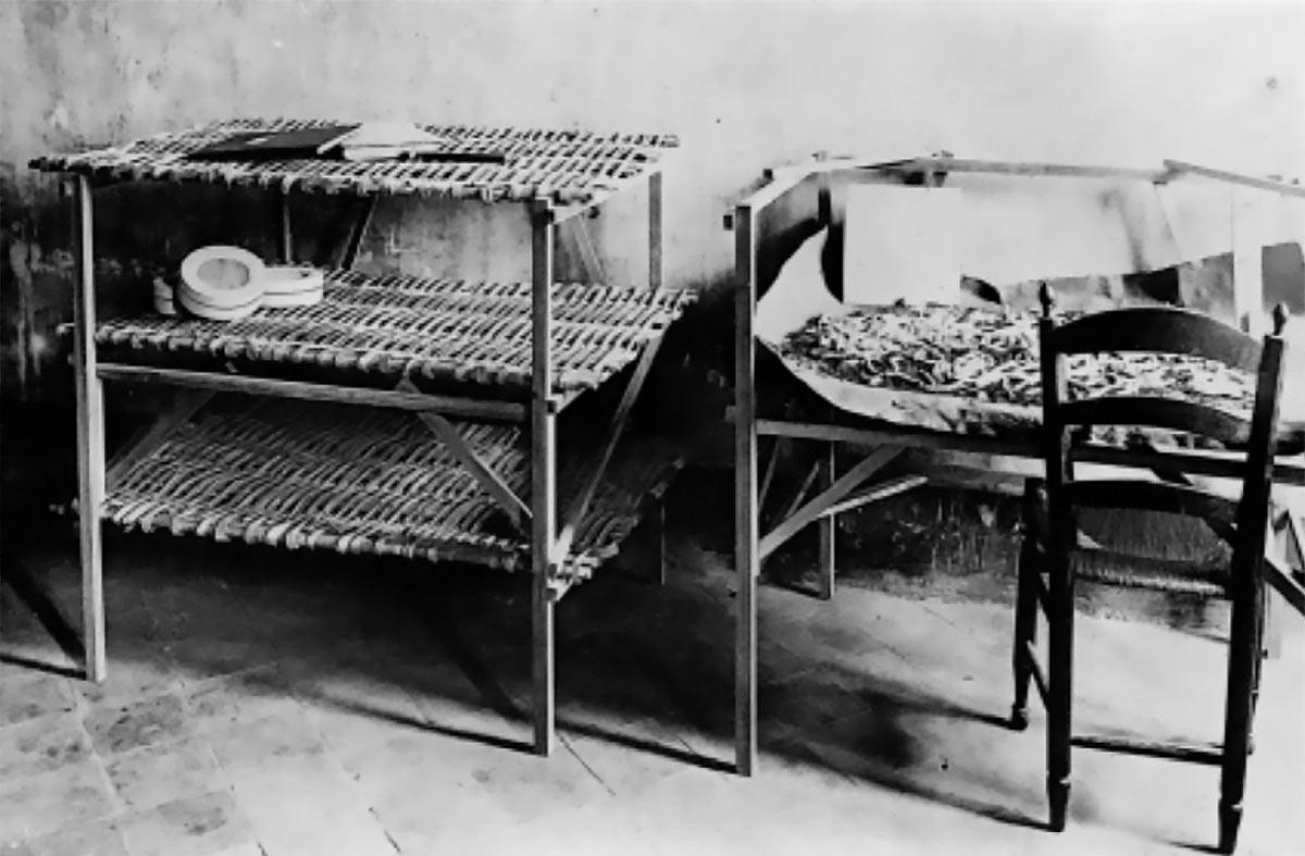 Photo extraite de la thèse de Georges Coutagne – Recherches expérimentales sur l'hérédité chez les vers à soie (1902)